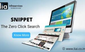 Snippet – The Zero Click Search